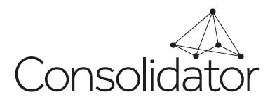 Consolidator: Simpler, fatter, System Landscape Optimisation