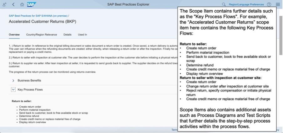 scope item details