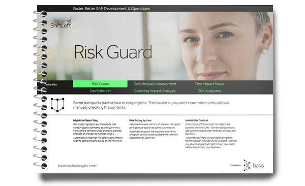 SAP project risk reduce