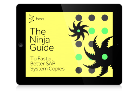 eBook: 10-Step Guide to Faster, Better SAP System Copies